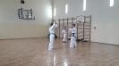Pokaz sztuk walki taekwon - do ITF prowadzony przez Mistrza Polski -10
