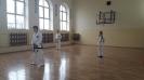 Pokaz sztuk walki taekwon - do ITF prowadzony przez Mistrza Polski -1
