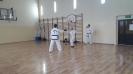 Pokaz sztuk walki taekwon - do ITF prowadzony przez Mistrza Polski -2
