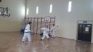 Pokaz sztuk walki taekwon - do ITF prowadzony przez Mistrza Polski -3