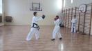 Pokaz sztuk walki taekwon - do ITF prowadzony przez Mistrza Polski -5